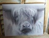 Kalkverf op canvas 'Hooglander'_3