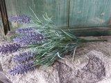 Bosje Lavendel (kunst)_3