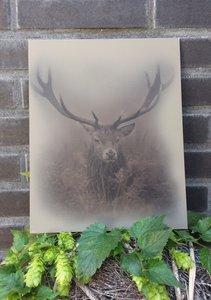 kalkverf op canvas 'edelhert'