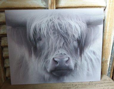 Kalkverf op canvas 'Hooglander'